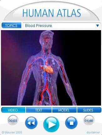 Anatomie | Medizinische Nachrichten